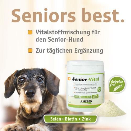 ANIBIO_Senior_mobil